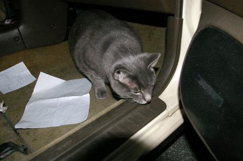 Khan sticks his nose outside the car door