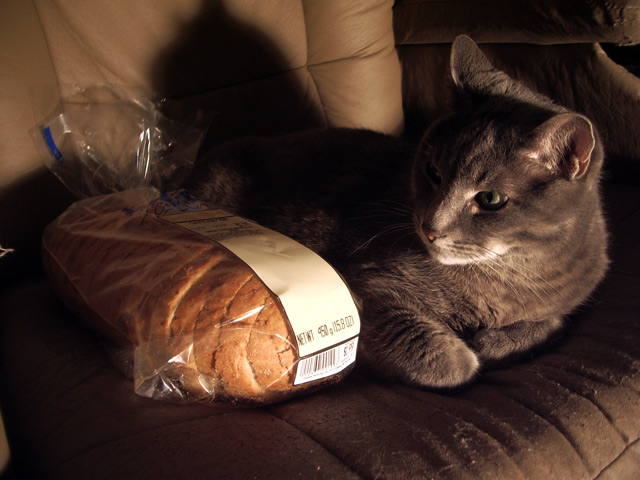 Khan inspects a loaf of Winnipeg rye bread