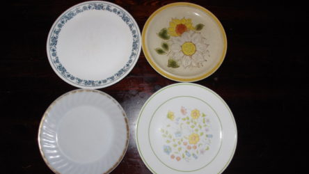 Shitty dinner plates