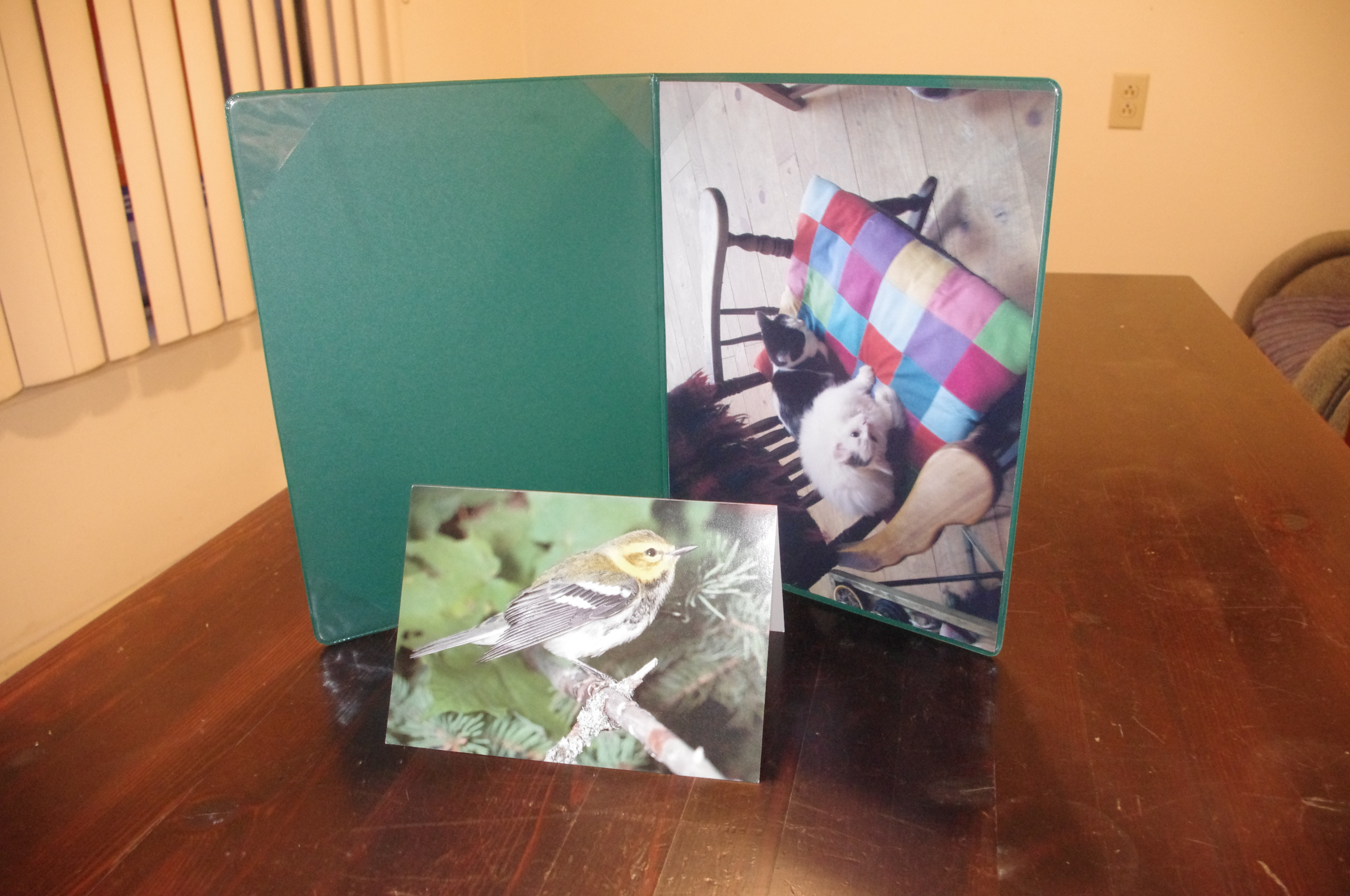 The stuff I got from Elizabeth May! The brid on the card is a black-throated green warbler.